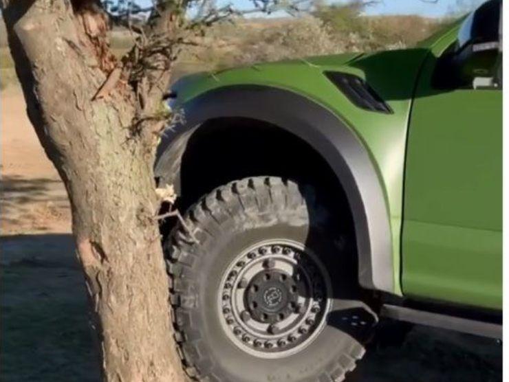 Jeep sull'albero (Instagram)